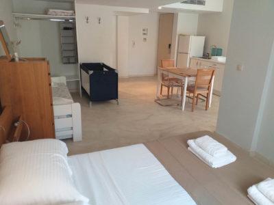 Aphrodite Hotel Samos (6)