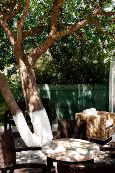 Aphrodite Hotel & Suites Samos (3)